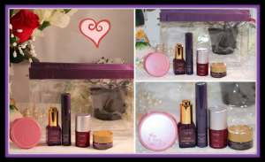 The Tarte of Giving Collector Set's Top Clear Makeup Bag and Contents