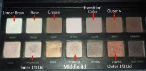 Lorac Pro Champagne Eye Tutorial Colors Used