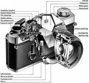 Film & Digital Camera | My Journey