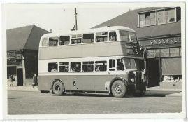 DUMBARTON BUS