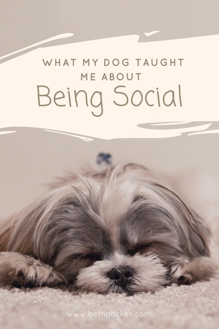 What my dog taught me about (1).jpg