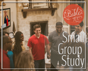 Bible 100 Small Group Img