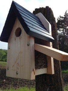 A store-bought ready-to-go bluebird box.