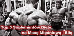 Suplementy diety na masę mięśniową i siłę