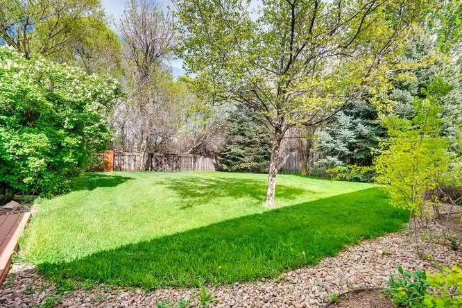 Peaceful, backyard