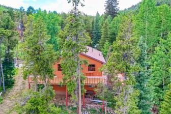 1123 Lodgepole Drive Evergreen-large-034-066-Exterior Rear-1500x1000-72dpi copy