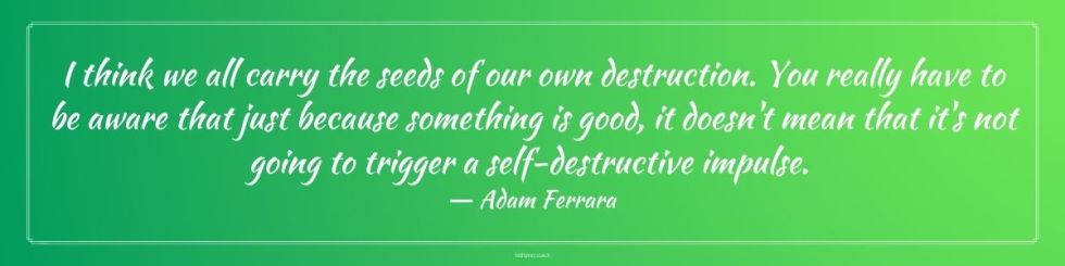 I think we all carry the seeds of our own destruction. You really have to be aware that just because something is good, it doesn't mean that it's not going to trigger a self-destructive impulse. Adam Ferrara