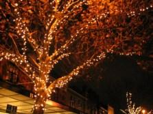 fairy-lights-outdoor-2