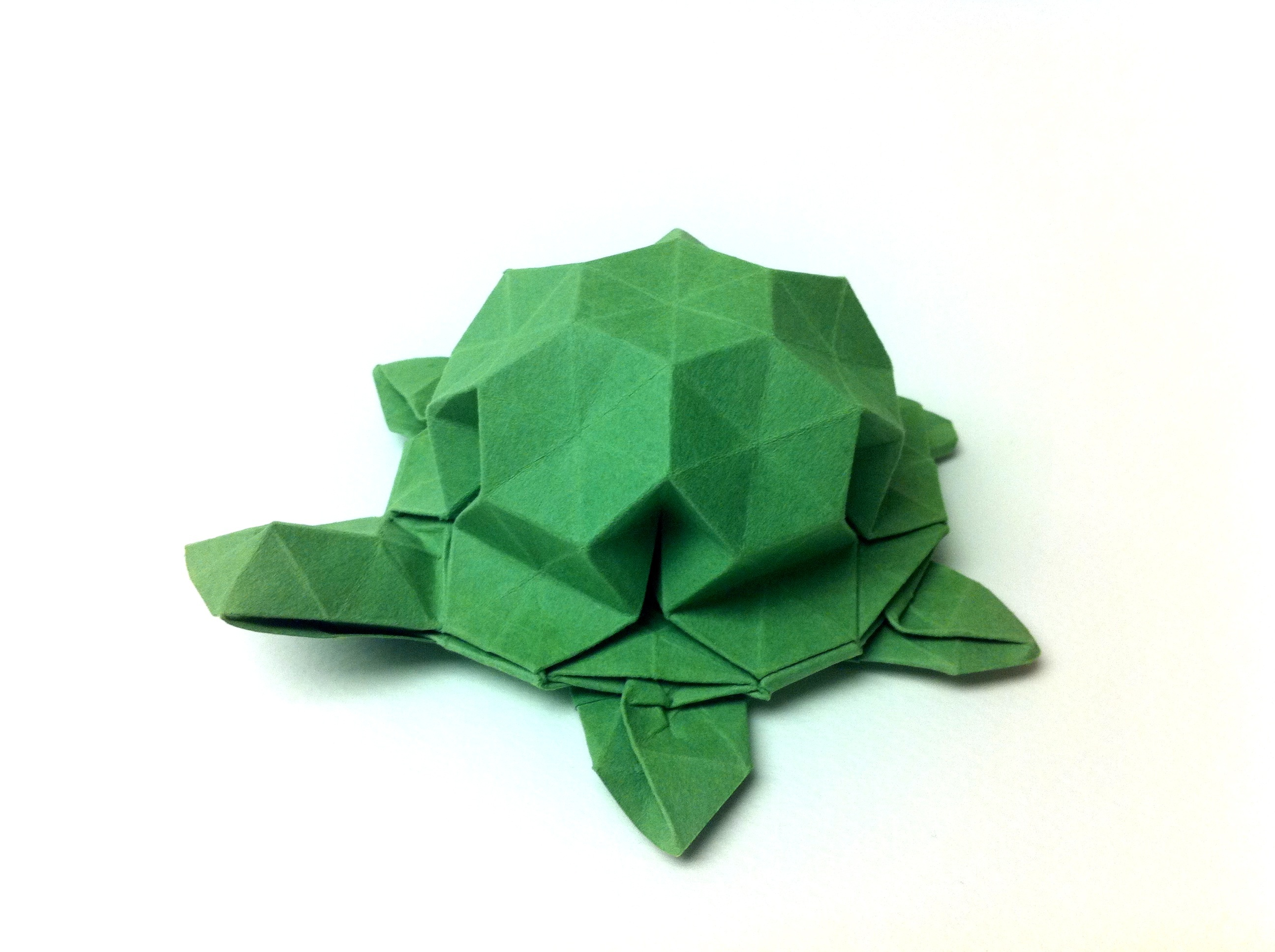 paper origami turtle diagram rainforest structure instructions