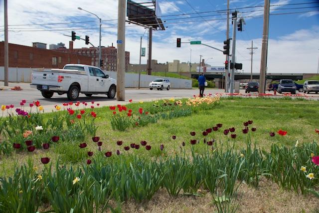 18th Street planting, April 2015 (1)