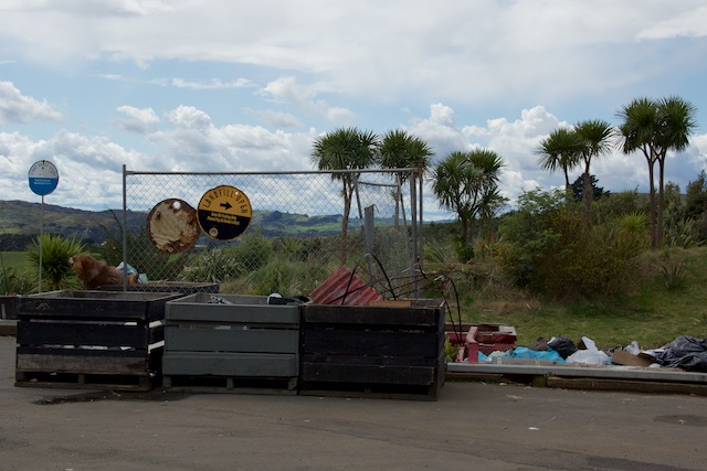 Extreme landfill Raglan NZ Sept 2015