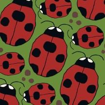 ladybird designs
