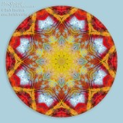 Fall Color Mandala 1 by Beth Sawickie http://bethsawickie.com/fall-color-mandala-1