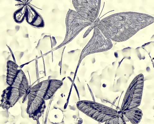 Butterfly Blueprint by Beth Sawickie http://bethsawickie.com/butterfly-blueprint