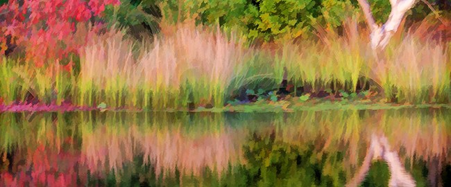 Early Fall Reflection by Beth Sawickie http://www.BethSawickie.com/early-fall-reflection