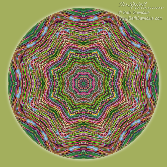 Fall Grass Mandala by Beth Sawickie http://www.BethSawickie.com/fall-grass-mandala