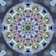 Christmastime Mandala 1 by Beth Sawickie