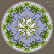 Green Leaves Mandala by Beth Sawickie http://www.BethSawickie.com/green-leaves-mandala