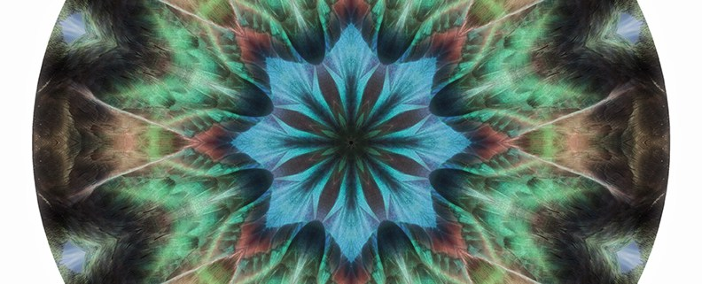 Feather Mandala 1 by Beth Sawickie
