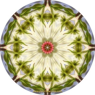 Mothers Day Mandala 1 Progress by Beth Sawickie
