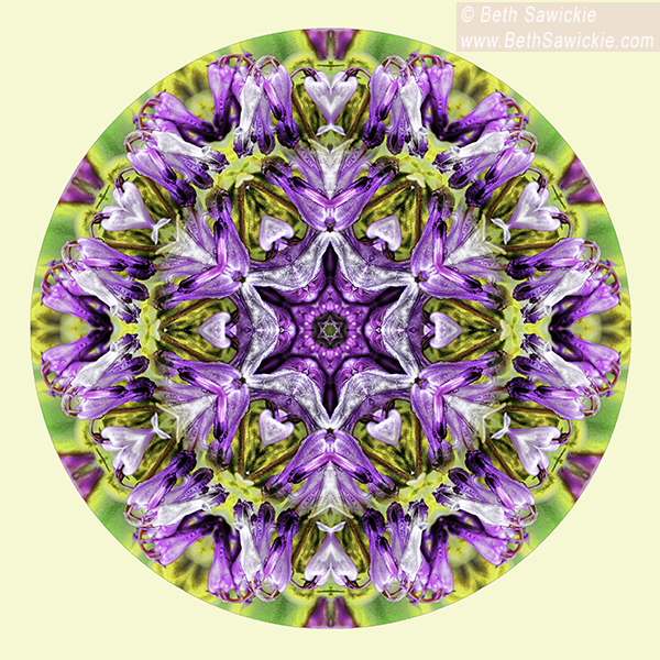 Spring Splendor Mandala by Beth Sawickie http://www.bethsawickie.com/spring-splendor-mandala
