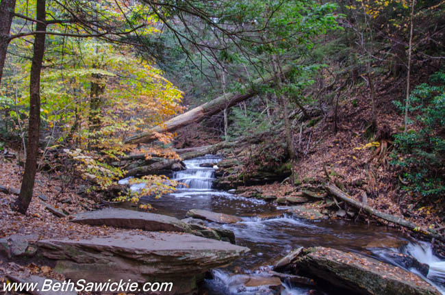 Ricketts Glen, PA 1 by Beth Sawickie http://bethsawickie.com/our-ricketts-glen-adventure/