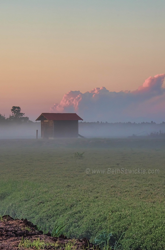 Fog Rolling Over Bogs at Sunset by Beth Sawickie www.BethSawickie.com