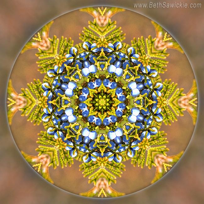 Winter Solstice Mandala by Beth Sawickie http://www.bethsawickie.com/winter-solstice-mandala