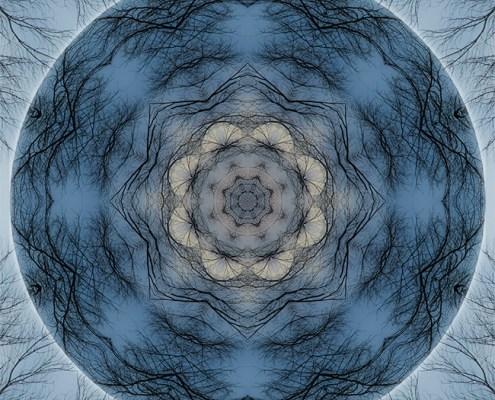 Winter Tree Mandala 1 by Beth Sawickie http://bethsawickie.com/winter-tree-mandala-1