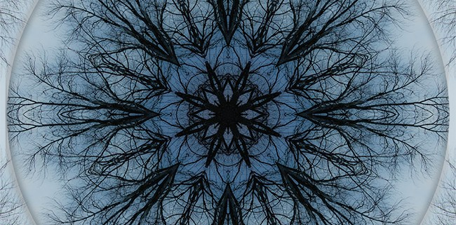 Winter Tree Mandala 2 by Beth Sawickie http://bethsawickie.com/winter-tree-mandala-2