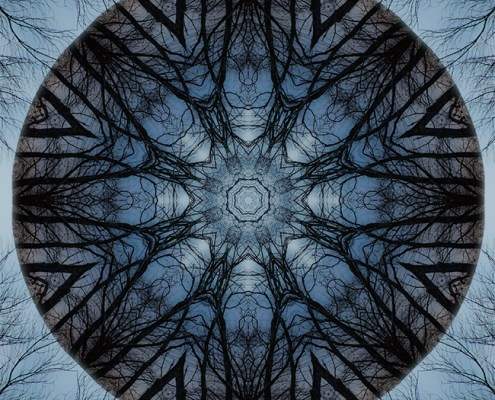 Winter Tree Mandala 3 by Beth Sawickie http://bethsawickie.com/winter-tree-mandala-3