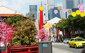- The flowers and traffic, Singapore -