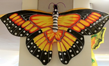 """The """"giant"""" butterfly kite."""
