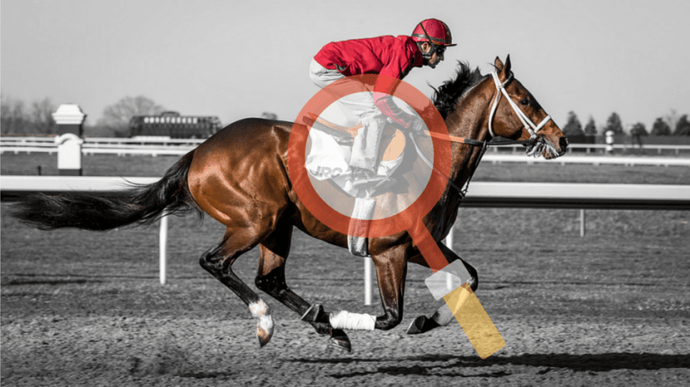 Horse Race Handicap | Understanding the System