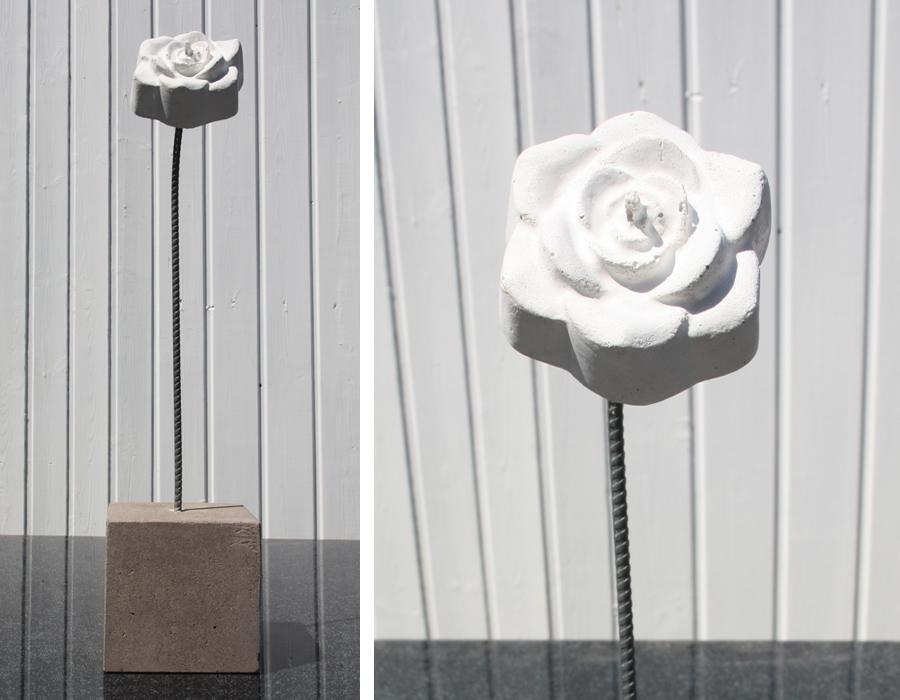 Rose  Beton Design Auer