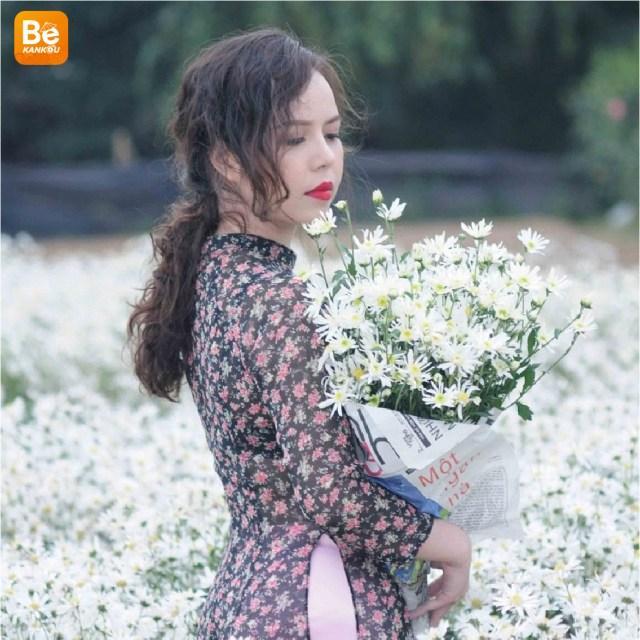 11月には、ハノイのデイジー(ヒナギク)の花に会う予定-17