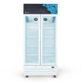Visa Cooler Gallant 2 Portas Vidro Duplo 488 LITROS 220V
