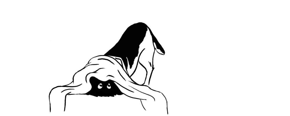 BlanketDog