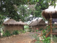Thatched bungalows at the Greenhouse.
