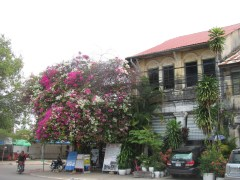 One of the original French buildings in Kampot.