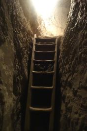 A ladder going up to another level of the cave dwellings.