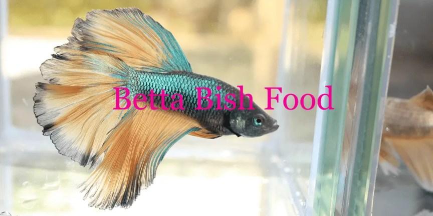 Betta Bish Food