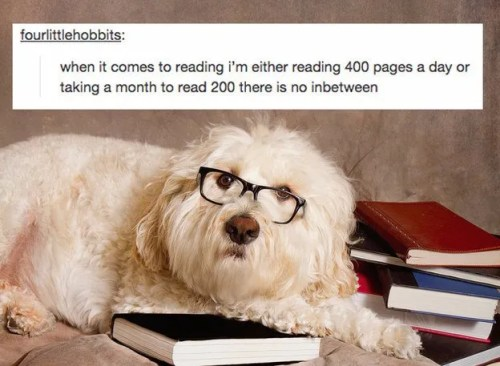 when-it-comes-to-reading