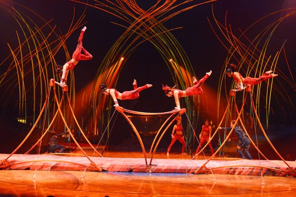 amaluna review