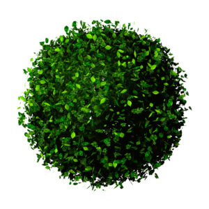 Planet earth made of leaves. Eco ball.