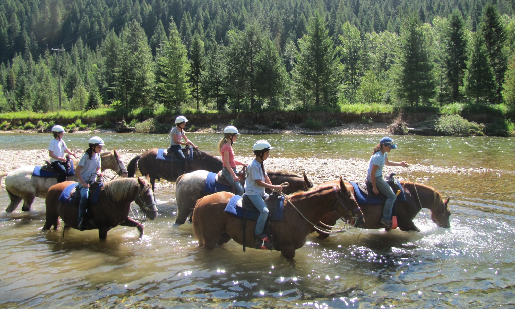 castle rock ranch horse riding
