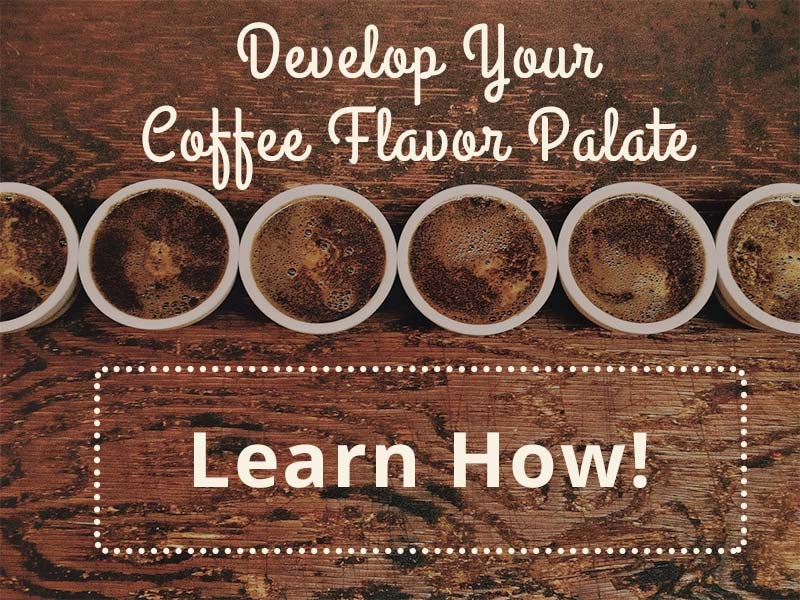 Coffee-Flavor-Palate