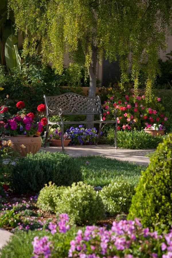 garden glory - spruce flower