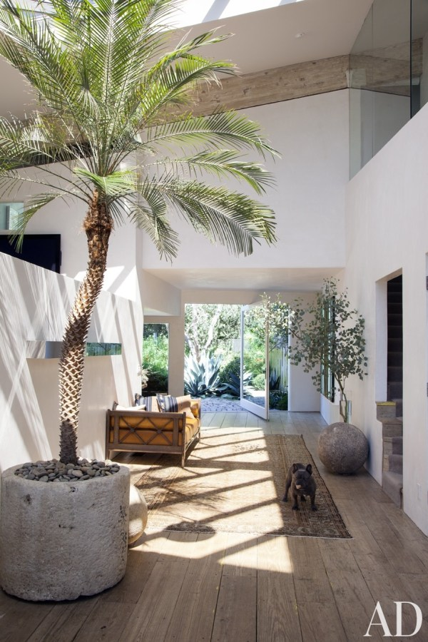 Decorate With Indoor Plants - 7 Tips And Tricks