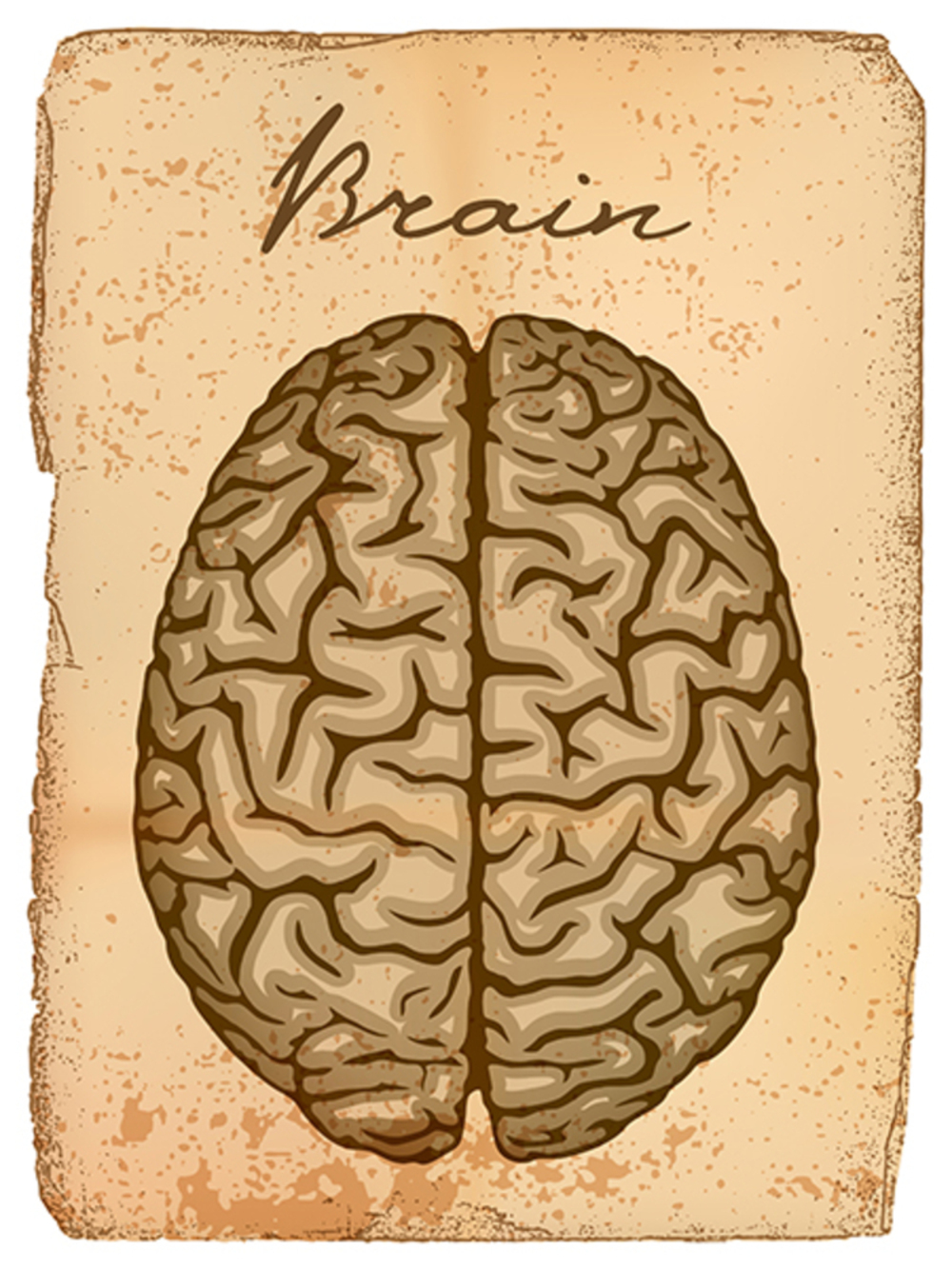 How To Promote Brain HealthThe Healthy Aging Checklist